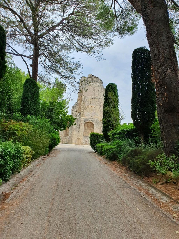 Jardins de la Fontaine  - Nîmes  (30) 20200894