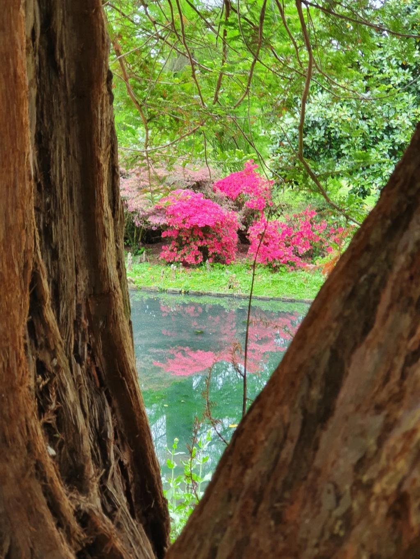 (44) Parc Floral de la Beaujoire - Nantes 20210404