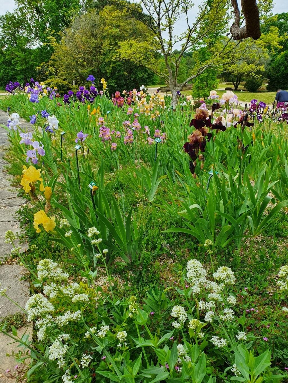 (44) Parc Floral de la Beaujoire - Nantes 20210405
