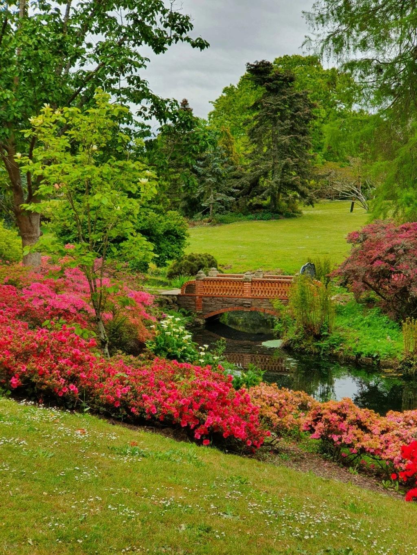 (44) Parc Floral de la Beaujoire - Nantes 20210406