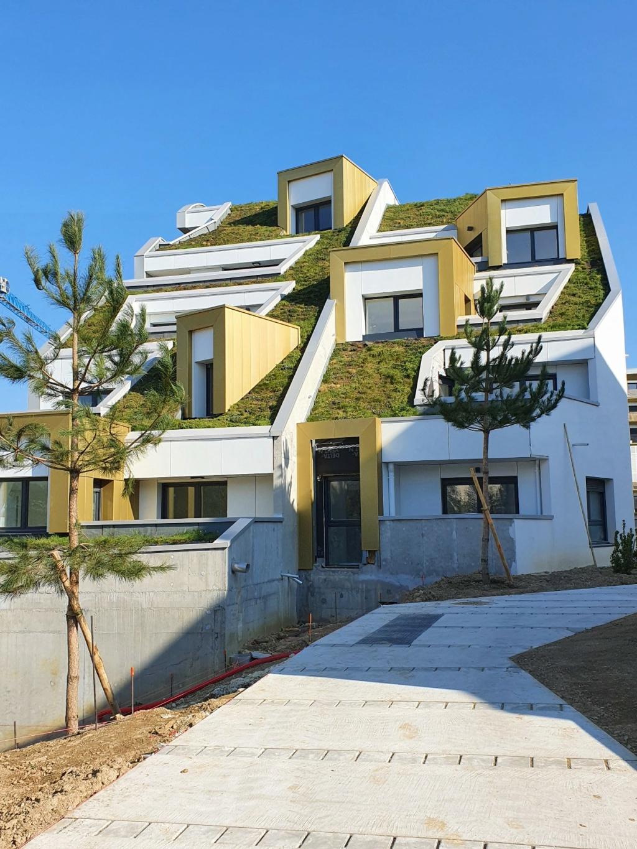 Le végétal et l'architecture   20210407