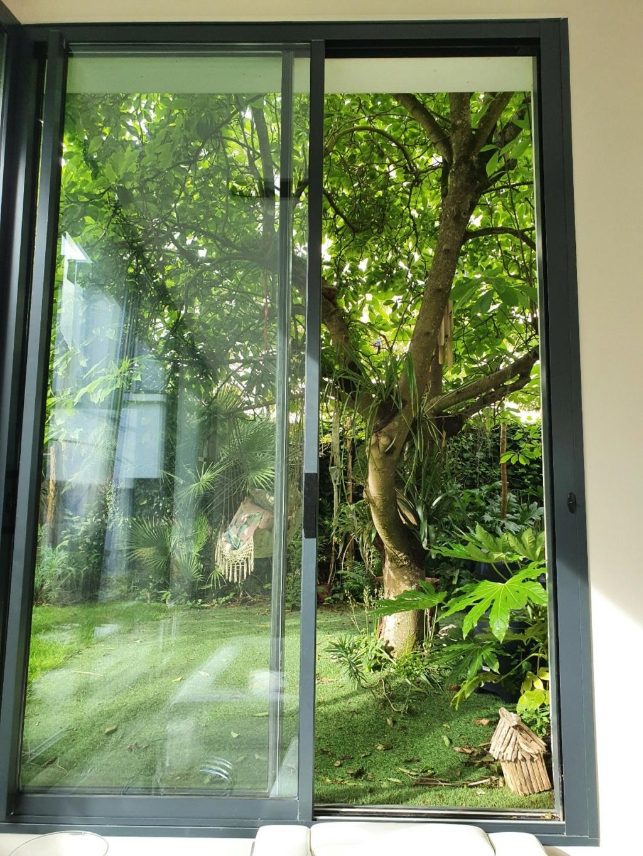 Fenêtre sur cour - En regardant par la fenêtre  20210622