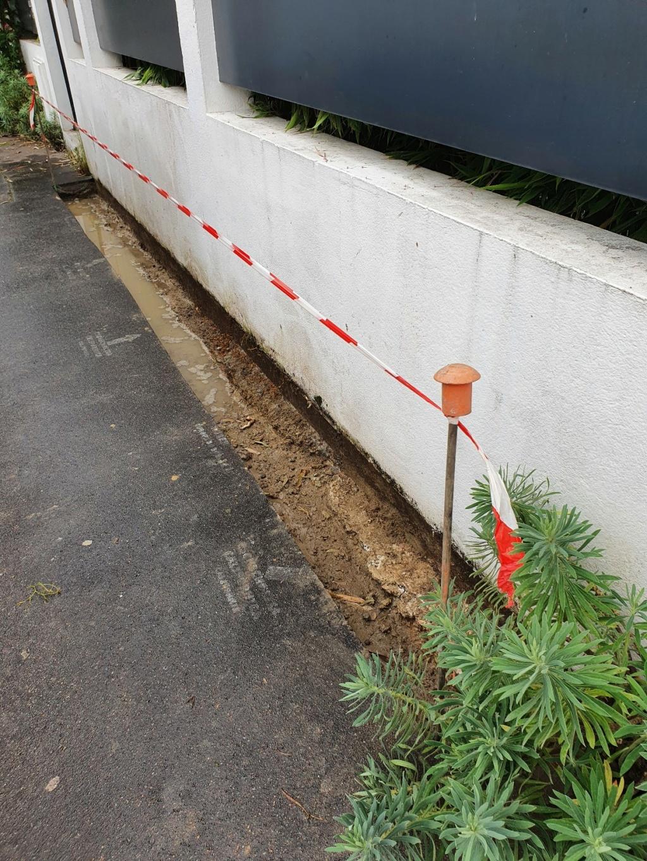 Végétaliser un trottoir - Page 31 20210815
