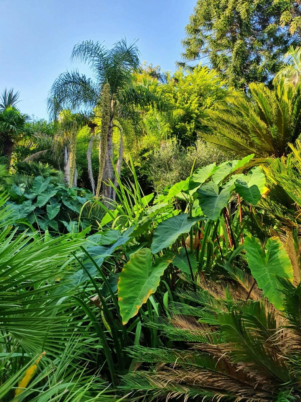 (06) Parc de la Villa Rothschild à  Cannes  20210946