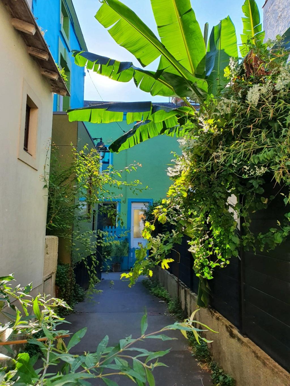Village jardin exotique de Trentemoult (44) - Page 2 20211046