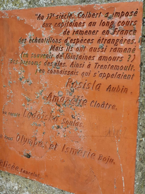 Village jardin exotique de Trentemoult (44) - Page 2 20211086