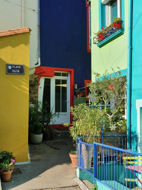 Village jardin exotique de Trentemoult (44) - Page 2 20211087