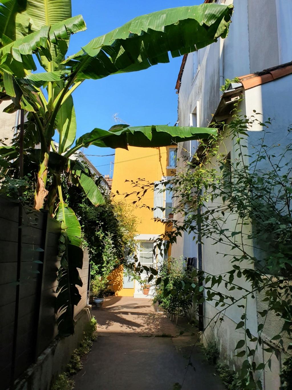 Village jardin exotique de Trentemoult (44) - Page 2 20211090