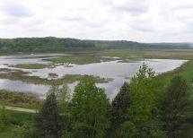 Kleinbogen Ukraine, Blockausgabe: Nationalpark Jaworiw 737711