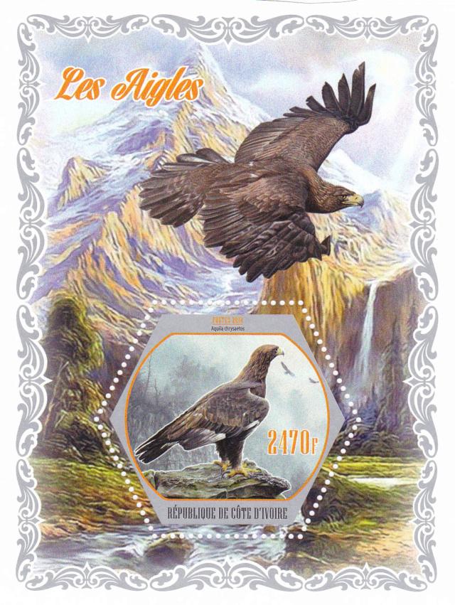 Adler der welt 7810