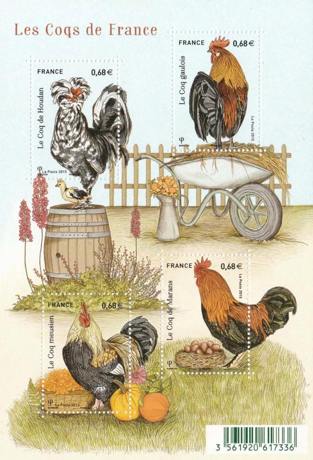 Kleinbogen Hähne und Hühner Img_2219