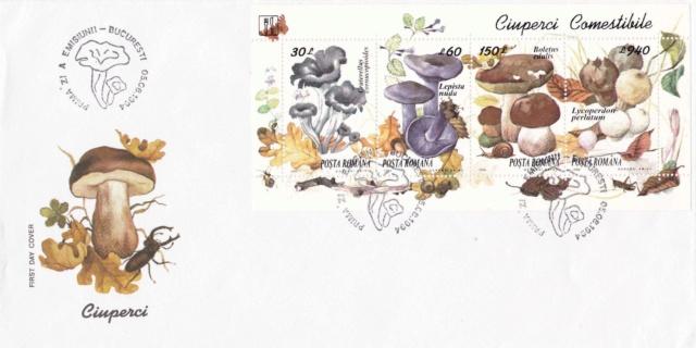 Pilze-Briefe und einzelne Briefmarken Rumänien  Img_2254
