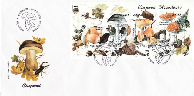 Pilze-Briefe und einzelne Briefmarken Rumänien  Img_2255