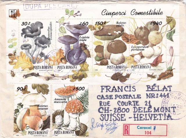Pilze-Briefe und einzelne Briefmarken Rumänien  Img_2259