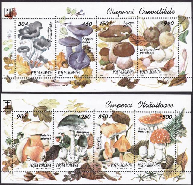 Pilze-Briefe und einzelne Briefmarken Rumänien  Img_2261