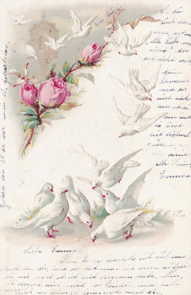 Romantische Postkarten  Img_2314