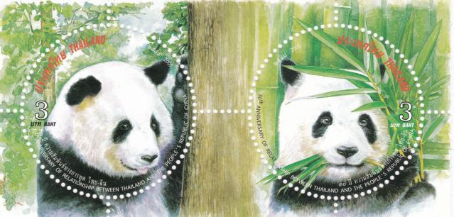 Panda-Bären Img_2387