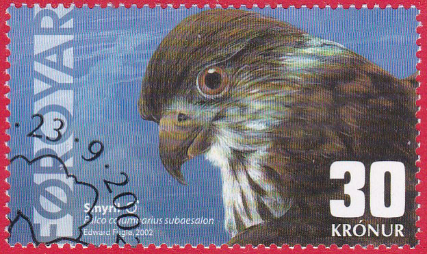 Mein Sammelgebiet: Färöer Inseln Img_2405