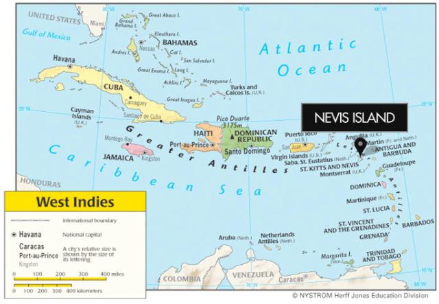 Eisvögel der Welt Nevis-11