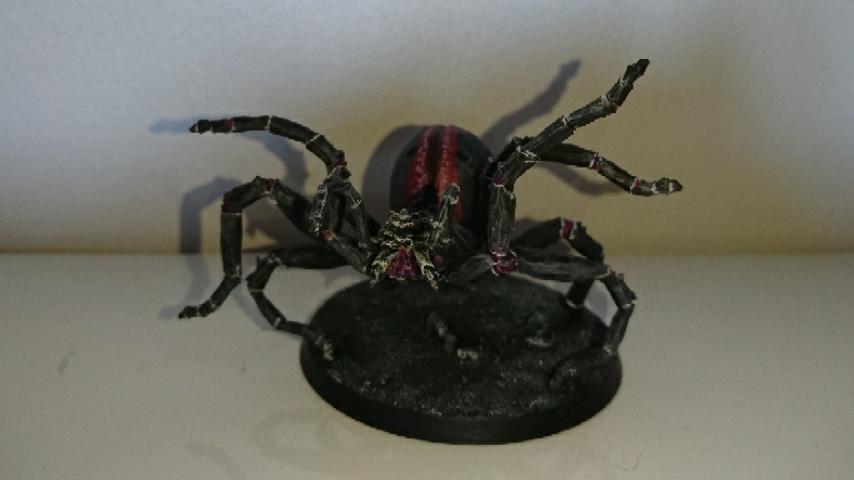 [Andrann i ùan - Novice] - Arachné Captur13