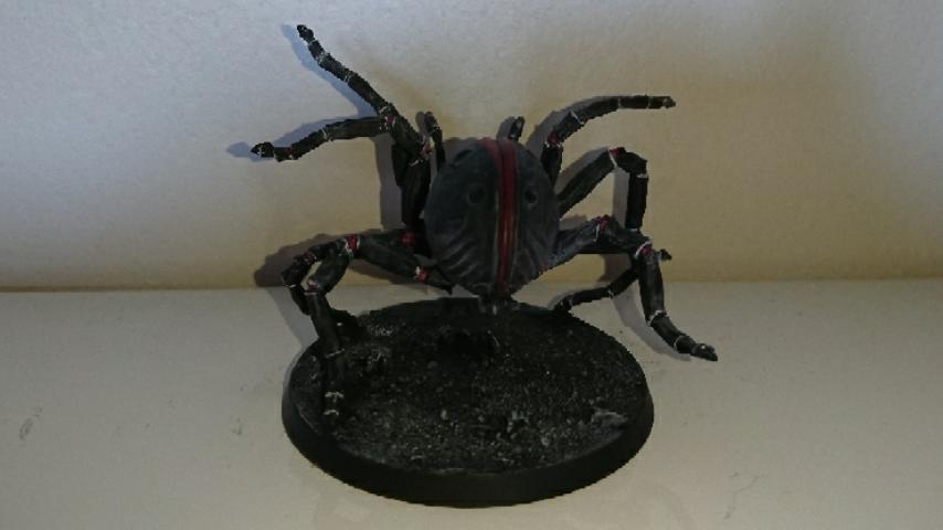[Andrann i ùan - Novice] - Arachné Captur14
