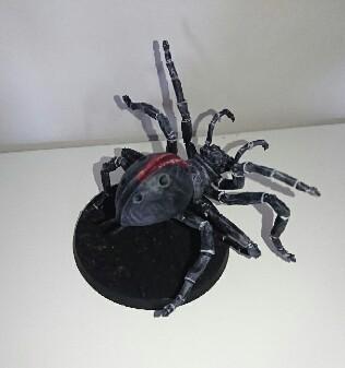 [Andrann i ùan - Novice] - Arachné Img_2011