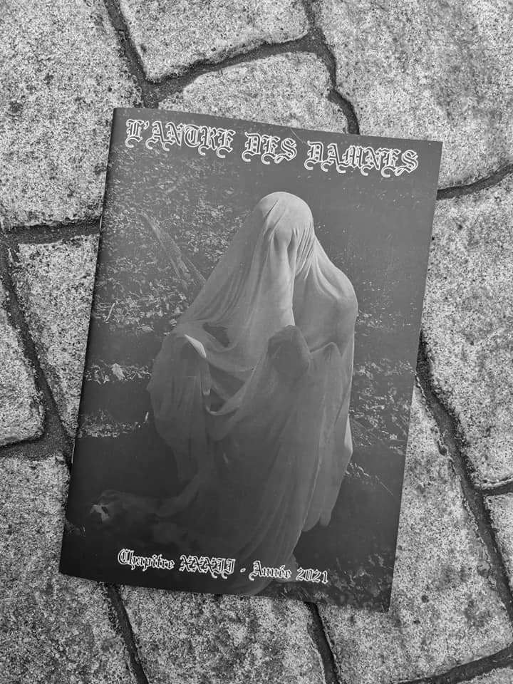 """Fanzines - """"Acid Vicious"""" et """"L'Antre des Damnés""""  20416410"""