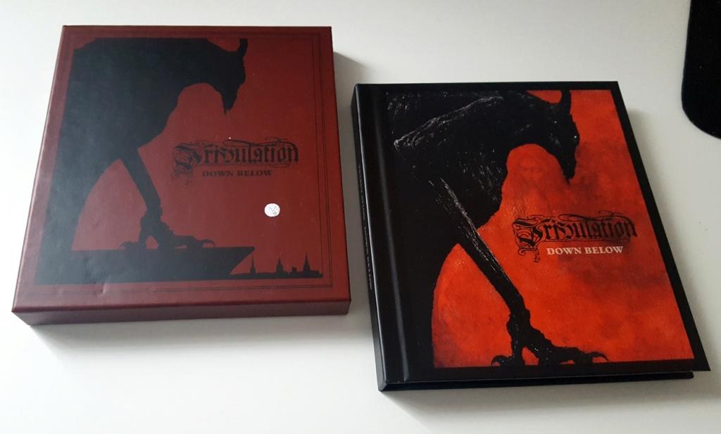 Vous avez des BOX CD ou/et Vinyles Collectors? 87197920
