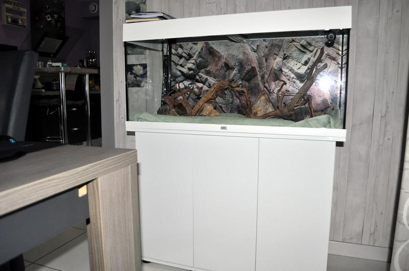 Projet aquarium 180 L Dsc_0019