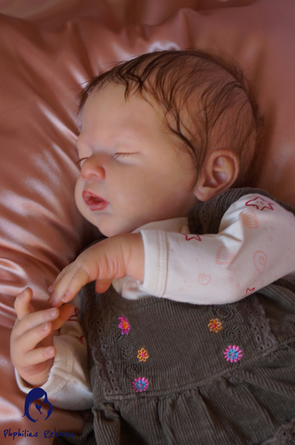 Introduction Dsc02010