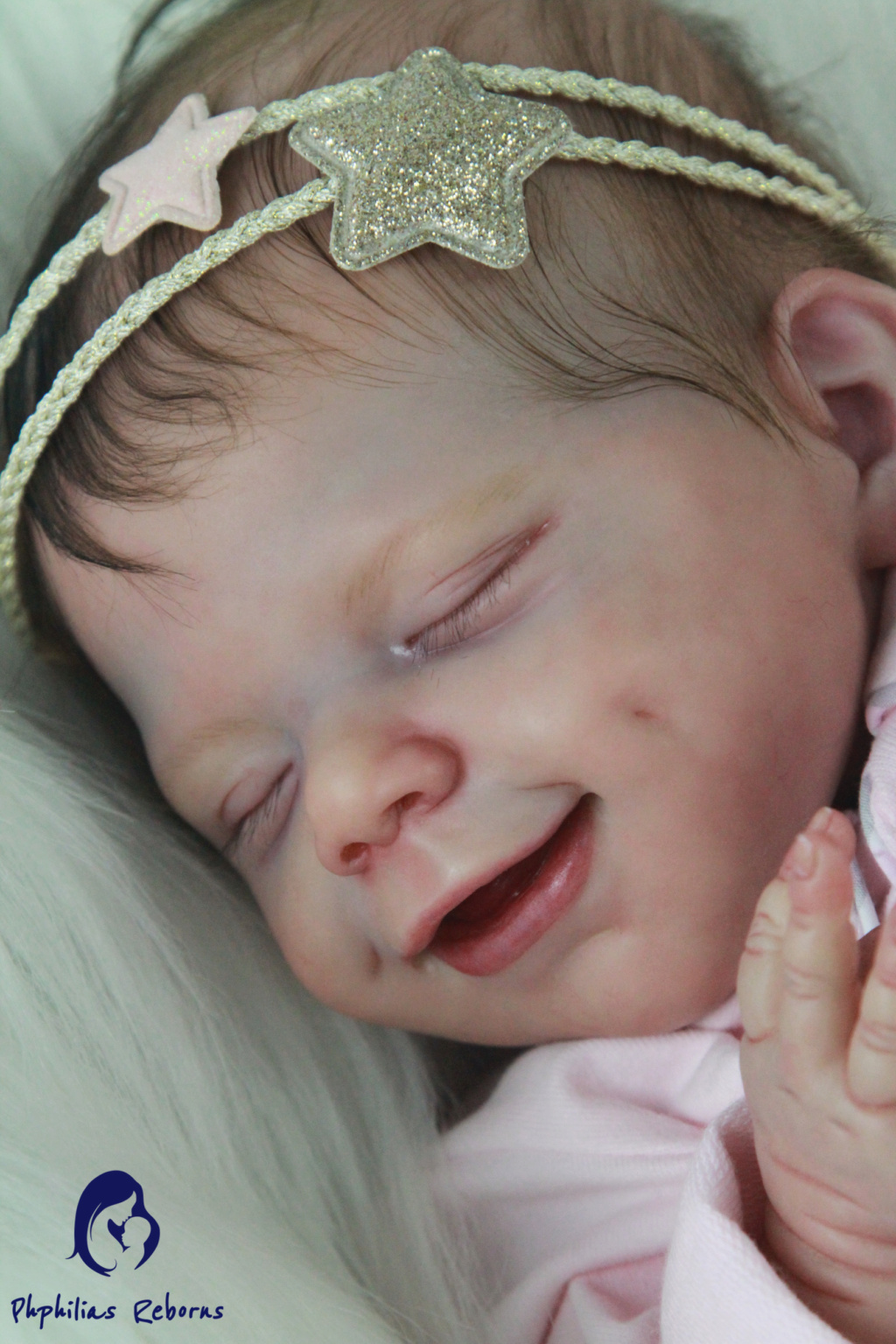 Introduction Img_9013