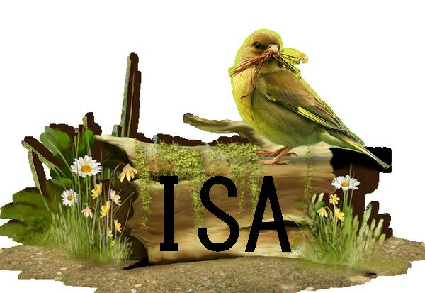 VOTER POUR LE FORUM SUR MEILLEUR DU WEB Isa_si10