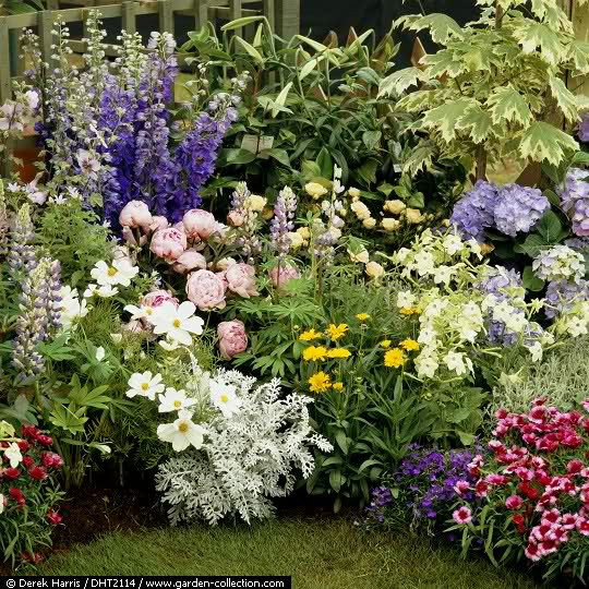 El Arco Iris en el Jardín 20r7cx10