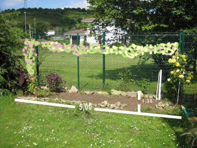 Un sueño.........Mil rosas en mi Jardin 2a9plc11