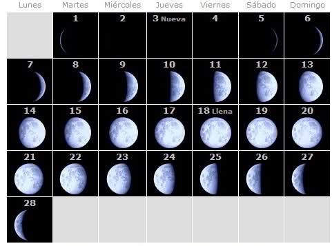 Fases Lunares 2011 2lbfi810