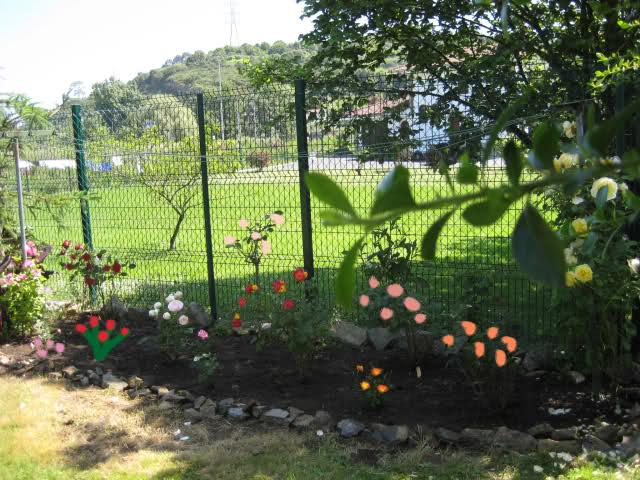 Un sueño.........Mil rosas en mi Jardin - Página 3 2ntvg510