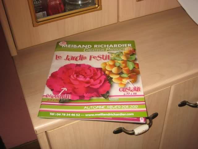 Un sueño.........Mil rosas en mi Jardin - Página 9 5u1c1510