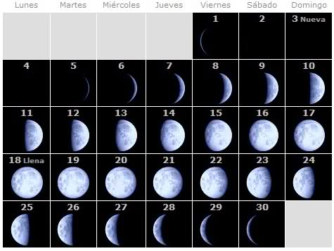 Fases Lunares 2011 A146c210