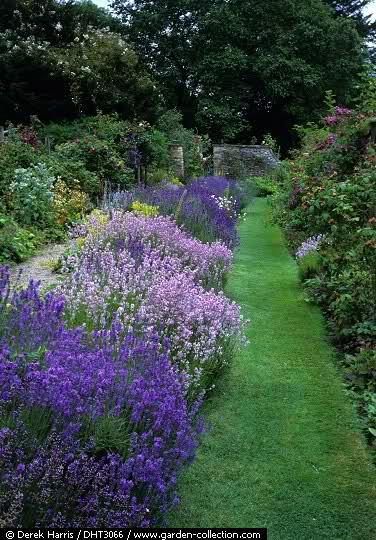 El Arco Iris en el Jardín Jqj18y10