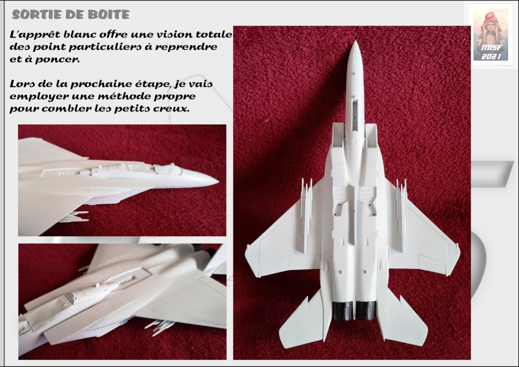 From the box - MC DONNELL DOUGLAS F15 EAGLE - AIRFIX 1-72 *** Terminé en pg 5 - Page 2 F15_0023