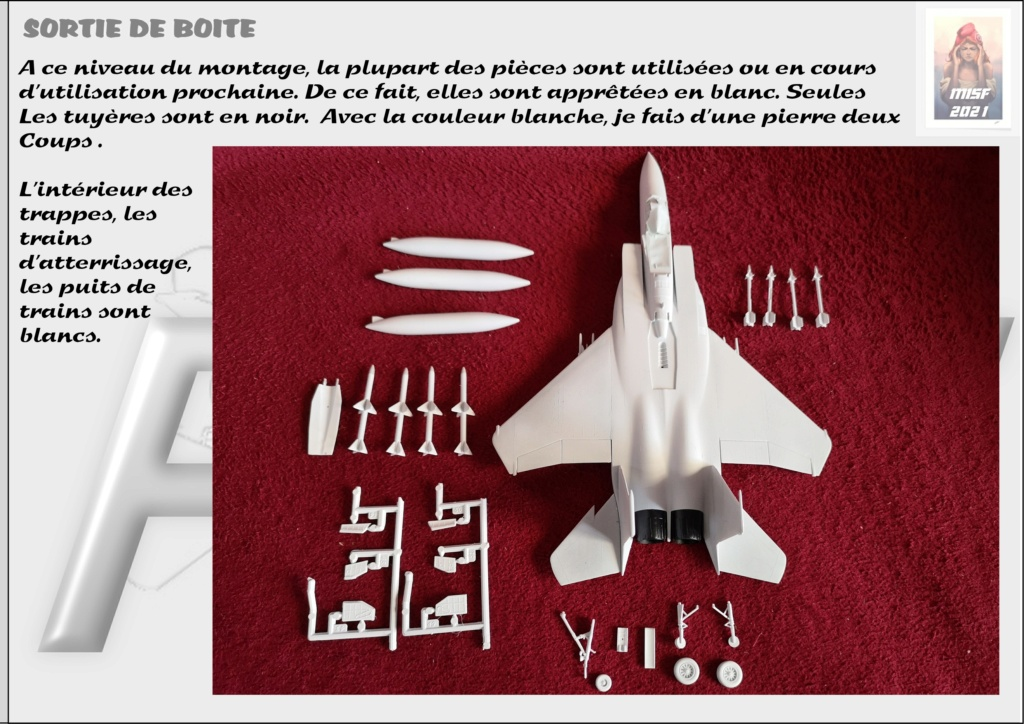 From the box - MC DONNELL DOUGLAS F15 EAGLE - AIRFIX 1-72 *** Terminé en pg 5 - Page 2 F15_0024