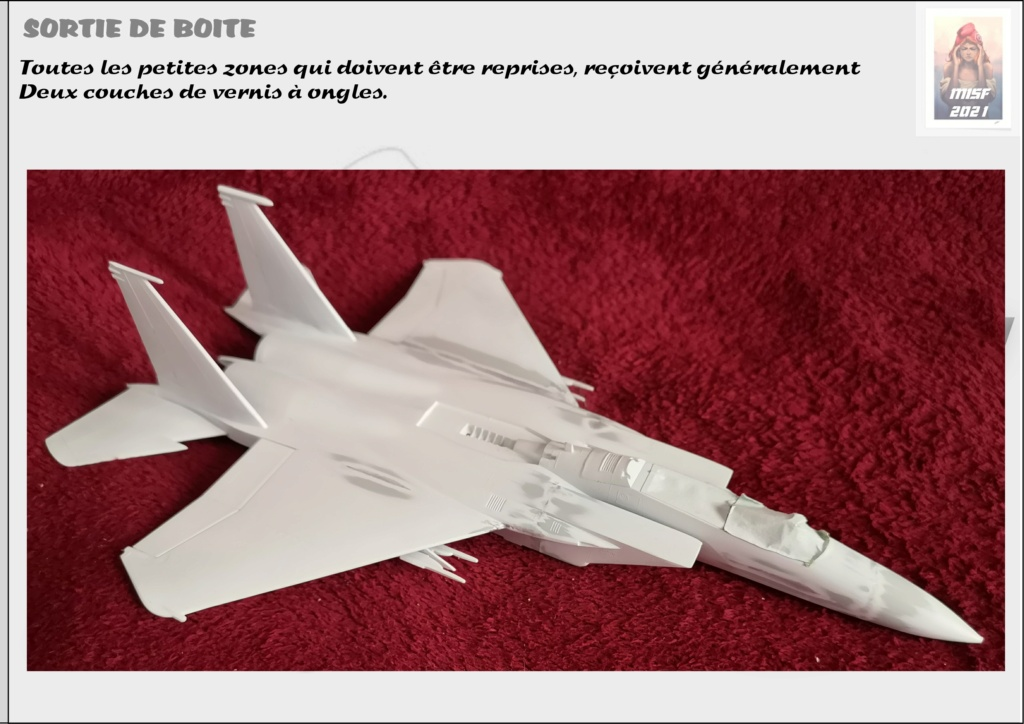 From the box - MC DONNELL DOUGLAS F15 EAGLE - AIRFIX 1-72 *** Terminé en pg 5 - Page 2 F15_0028