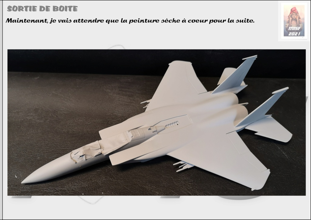 From the box - MC DONNELL DOUGLAS F15 EAGLE - AIRFIX 1-72 *** Terminé en pg 5 - Page 3 F15_0031