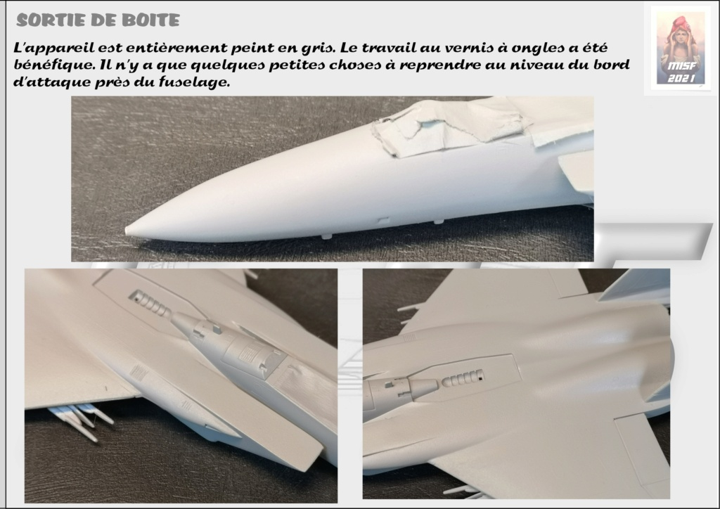 From the box - MC DONNELL DOUGLAS F15 EAGLE - AIRFIX 1-72 *** Terminé en pg 5 - Page 3 F15_0032