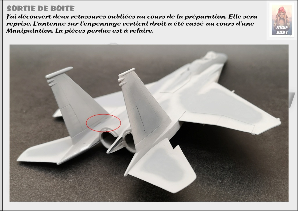 From the box - MC DONNELL DOUGLAS F15 EAGLE - AIRFIX 1-72 *** Terminé en pg 5 - Page 3 F15_0038