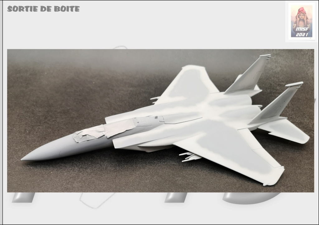 From the box - MC DONNELL DOUGLAS F15 EAGLE - AIRFIX 1-72 *** Terminé en pg 5 - Page 3 F15_0039