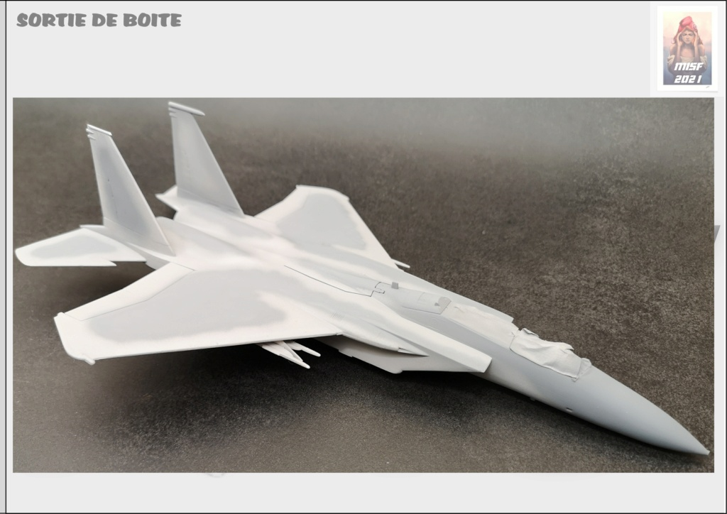 From the box - MC DONNELL DOUGLAS F15 EAGLE - AIRFIX 1-72 *** Terminé en pg 5 - Page 3 F15_0040