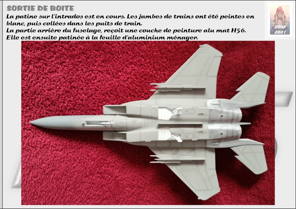From the box - MC DONNELL DOUGLAS F15 EAGLE - AIRFIX 1-72 *** Terminé en pg 5 - Page 4 F15_0045