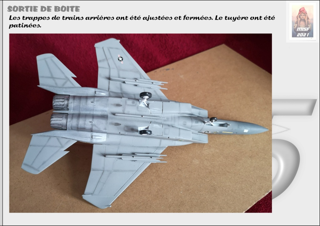 From the box - MC DONNELL DOUGLAS F15 EAGLE - AIRFIX 1-72 *** Terminé en pg 5 - Page 4 F15_0051