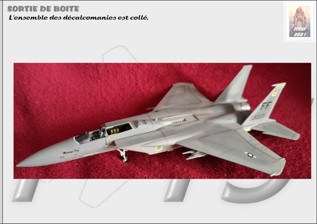 From the box - MC DONNELL DOUGLAS F15 EAGLE - AIRFIX 1-72 *** Terminé en pg 5 - Page 4 F15_0053
